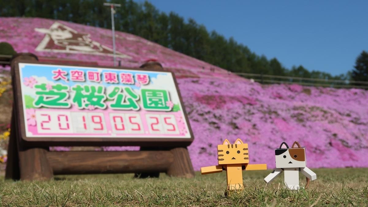 f:id:shirokumapanda:20210522215320j:plain