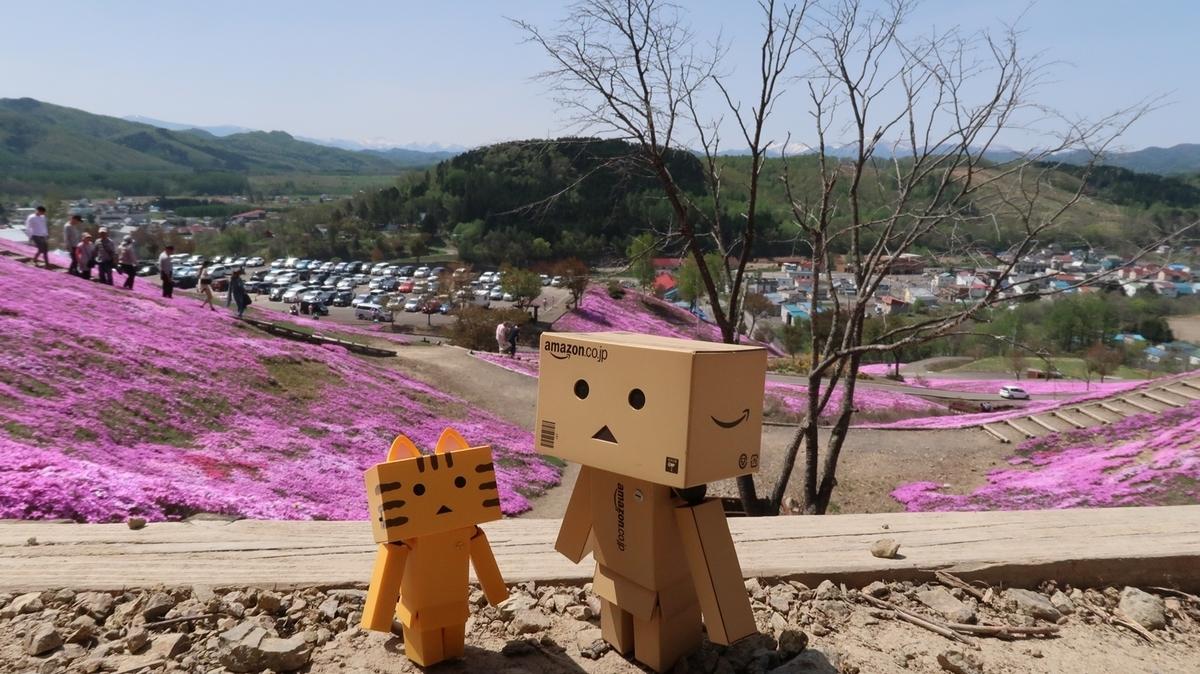 f:id:shirokumapanda:20210525232717j:plain