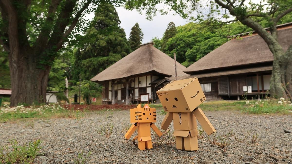 f:id:shirokumapanda:20210603224613j:plain