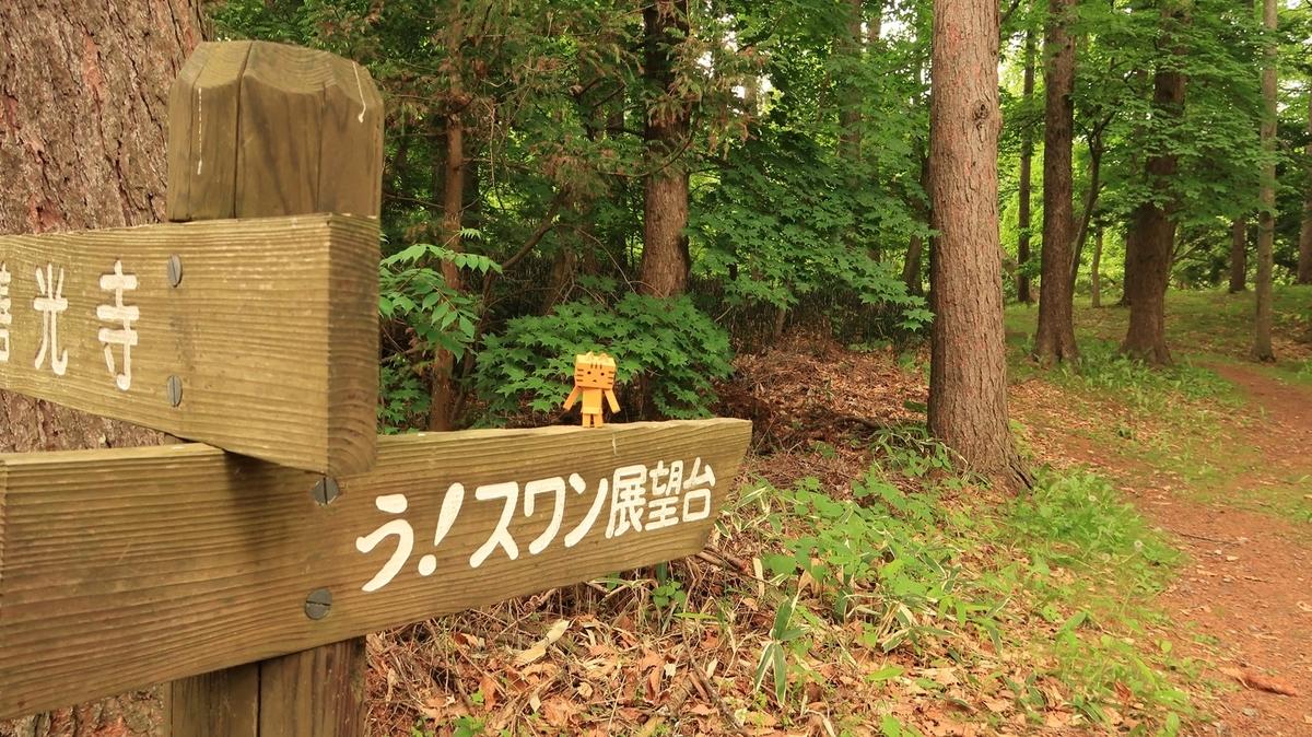 f:id:shirokumapanda:20210603224744j:plain