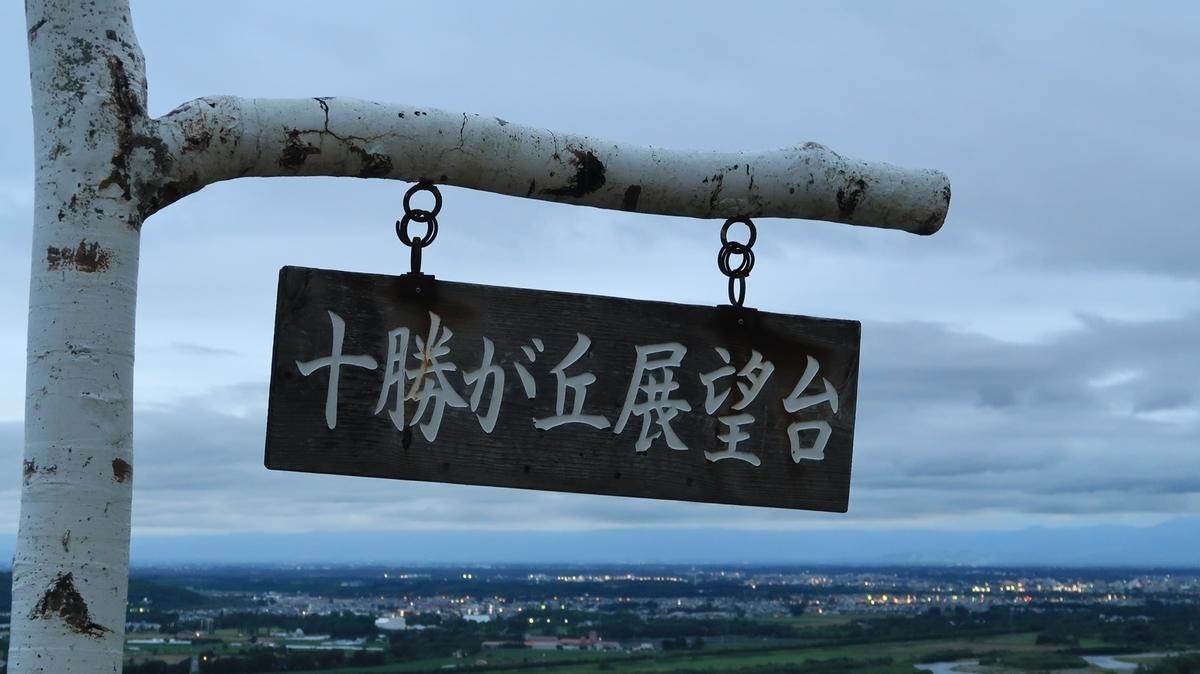f:id:shirokumapanda:20210620004221j:plain