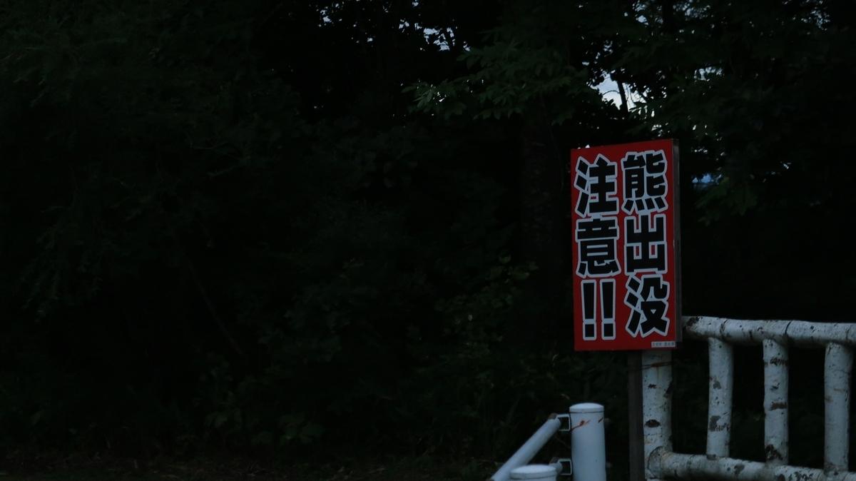 f:id:shirokumapanda:20210620004253j:plain