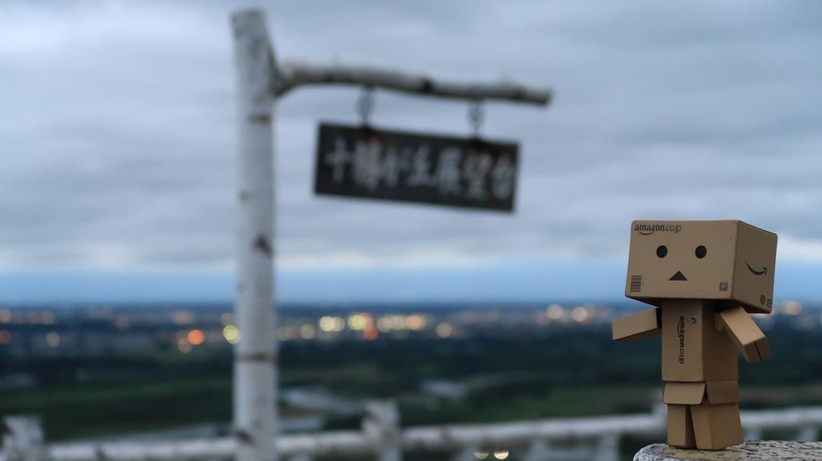 f:id:shirokumapanda:20210620004259j:plain