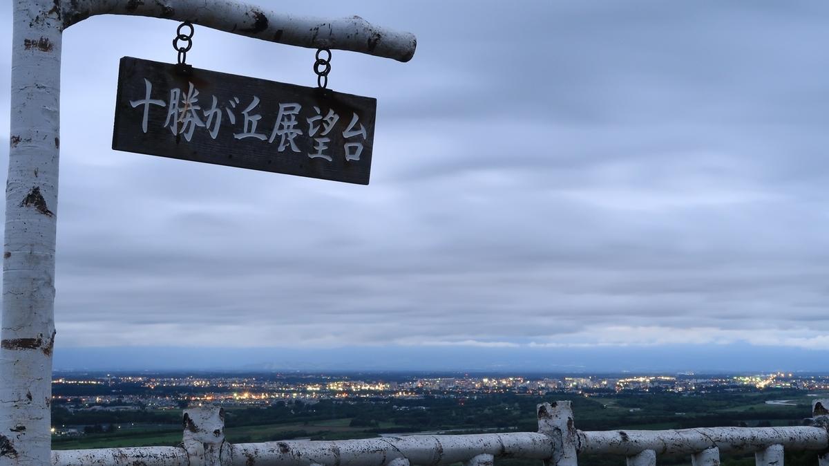 f:id:shirokumapanda:20210620004326j:plain