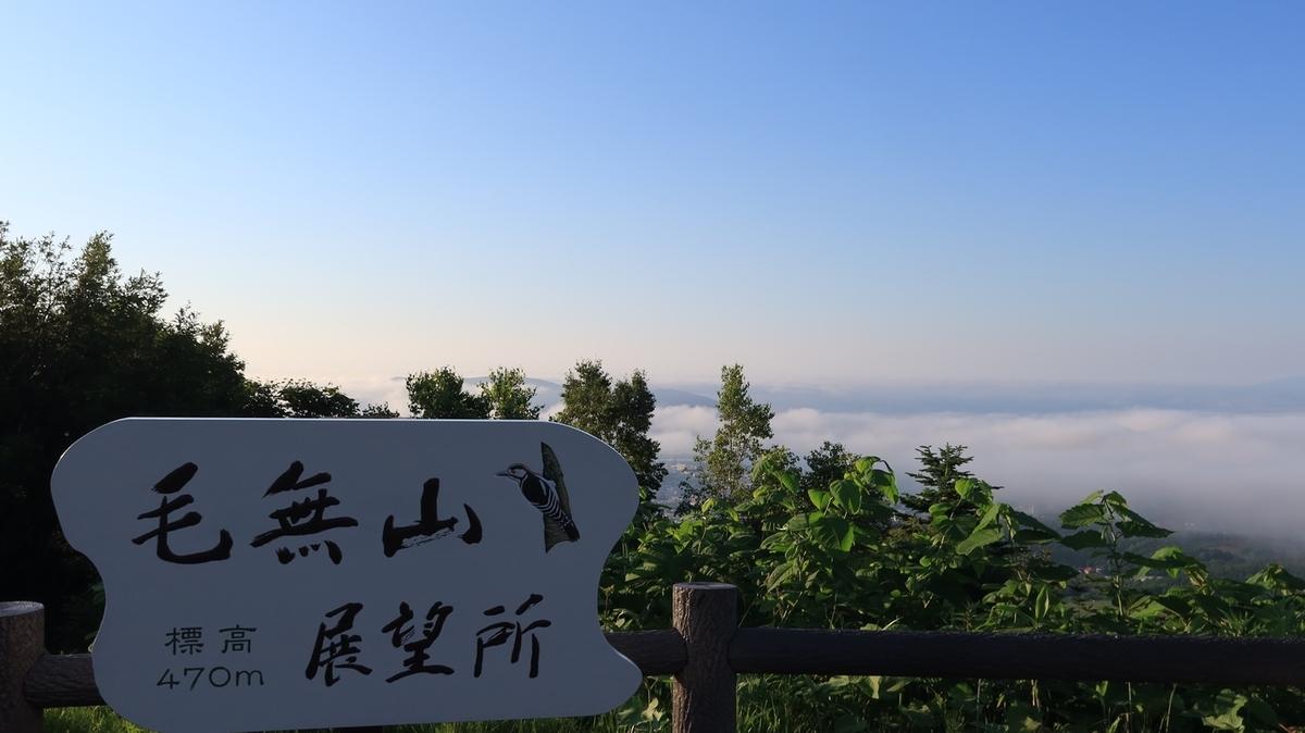 f:id:shirokumapanda:20210629015405j:plain