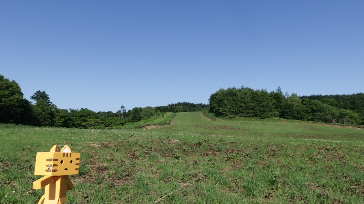f:id:shirokumapanda:20210703233222j:plain