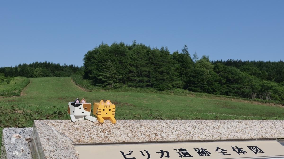 f:id:shirokumapanda:20210703233237j:plain