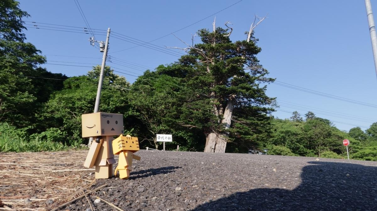 f:id:shirokumapanda:20210703233346j:plain