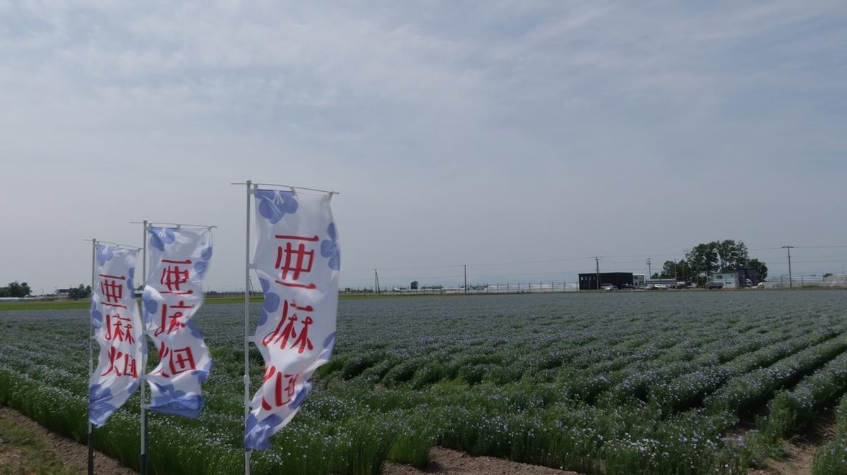 f:id:shirokumapanda:20210705003824j:plain