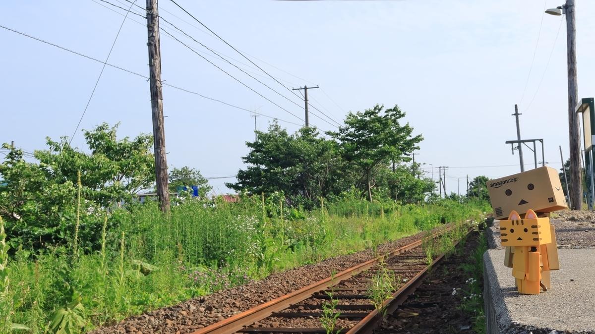 f:id:shirokumapanda:20210705004059j:plain