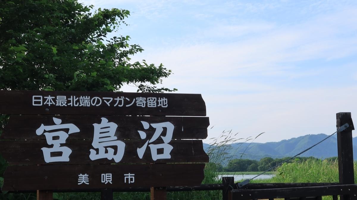 f:id:shirokumapanda:20210705004156j:plain