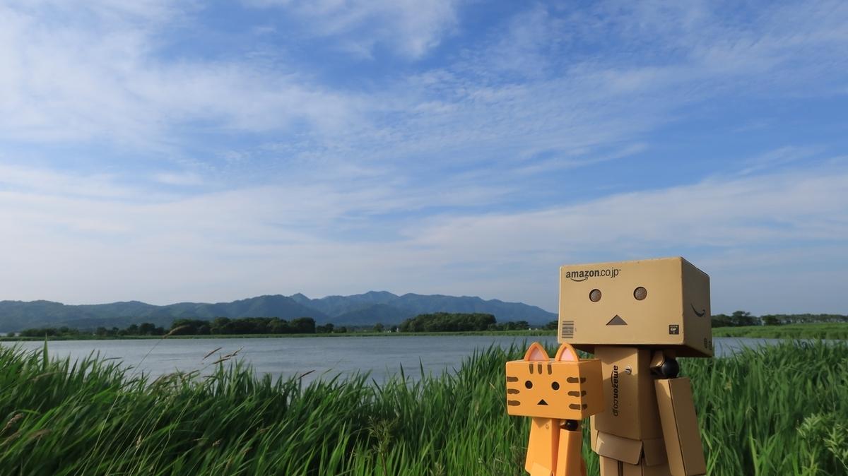 f:id:shirokumapanda:20210705004202j:plain