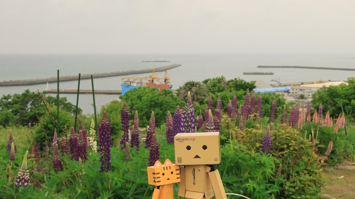 f:id:shirokumapanda:20210712023450j:plain