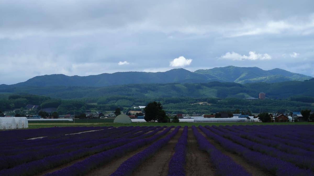 f:id:shirokumapanda:20210716232923j:plain