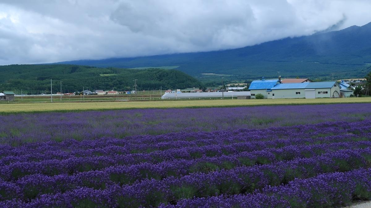 f:id:shirokumapanda:20210716233005j:plain