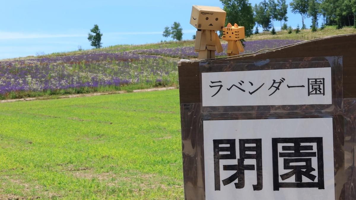 f:id:shirokumapanda:20210719230707j:plain