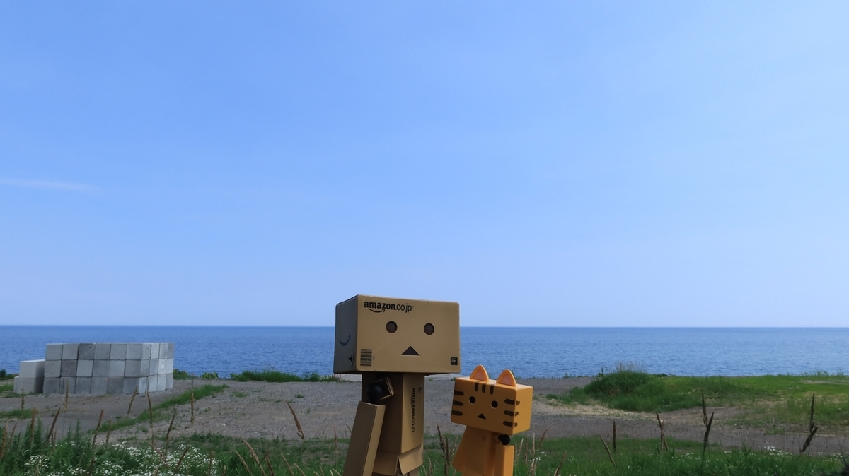 f:id:shirokumapanda:20210720232154j:plain