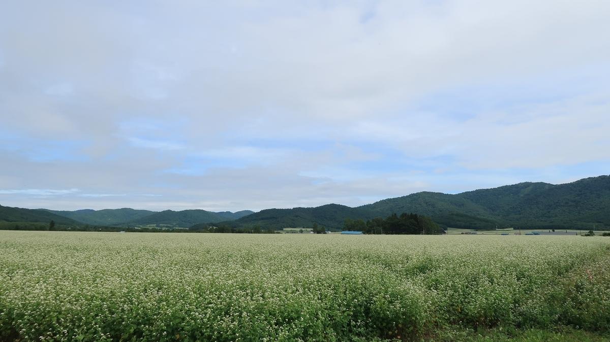 f:id:shirokumapanda:20210728001905j:plain