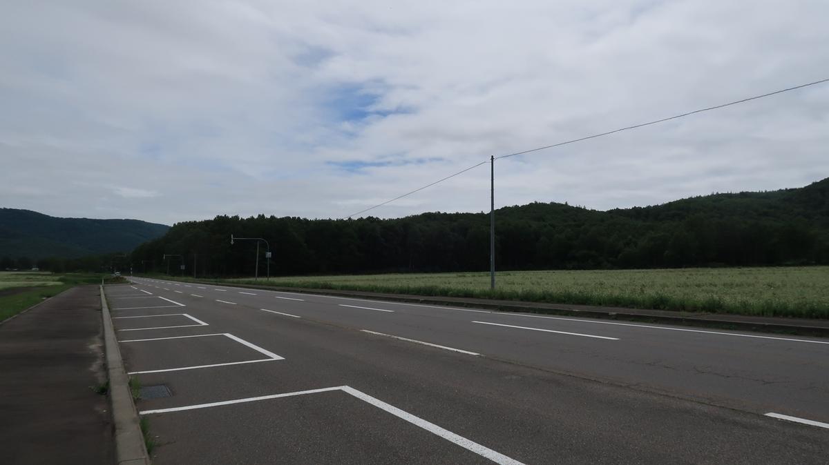 f:id:shirokumapanda:20210728001911j:plain