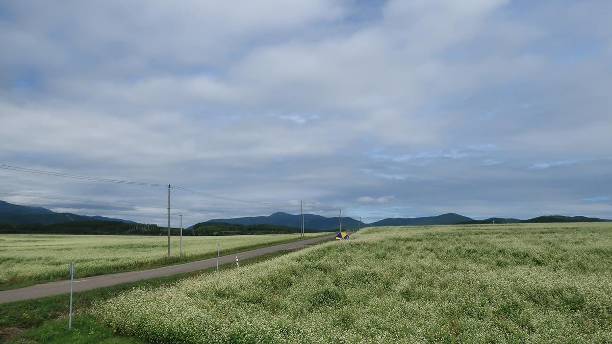 f:id:shirokumapanda:20210728002028j:plain