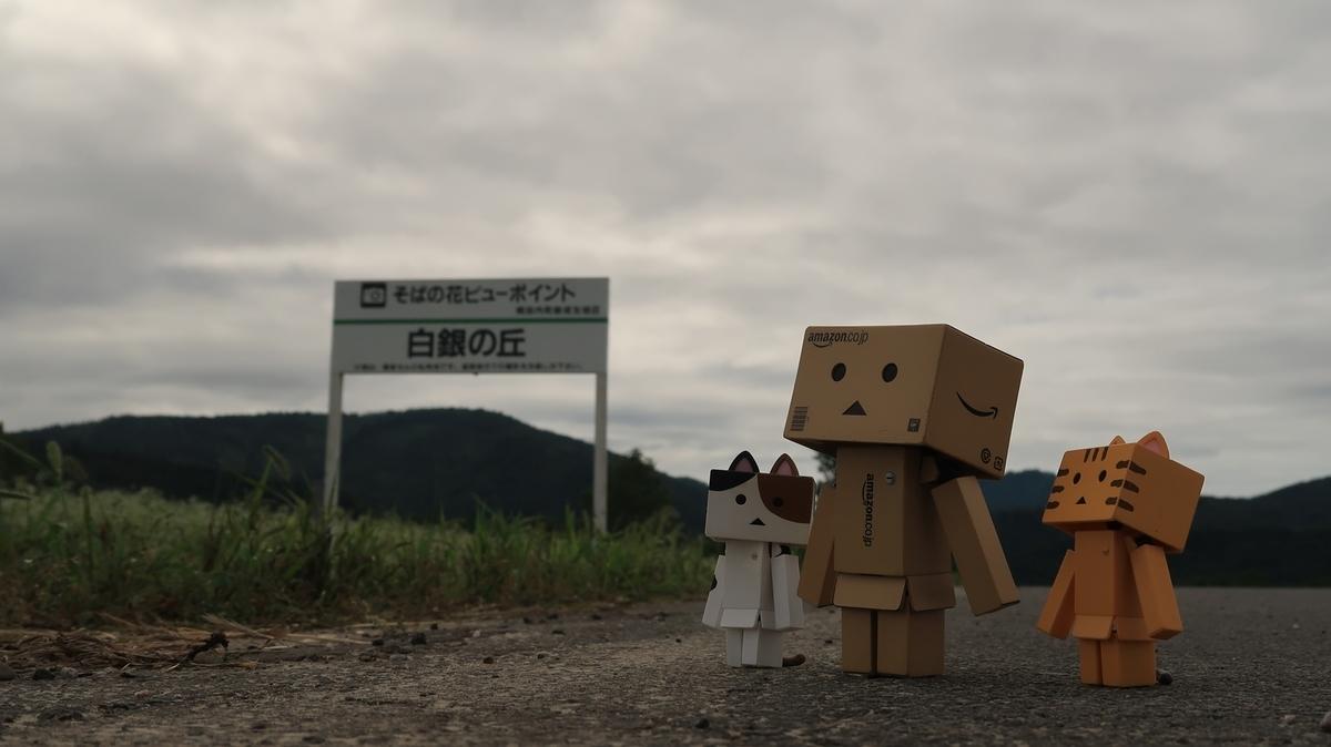 f:id:shirokumapanda:20210802233820j:plain