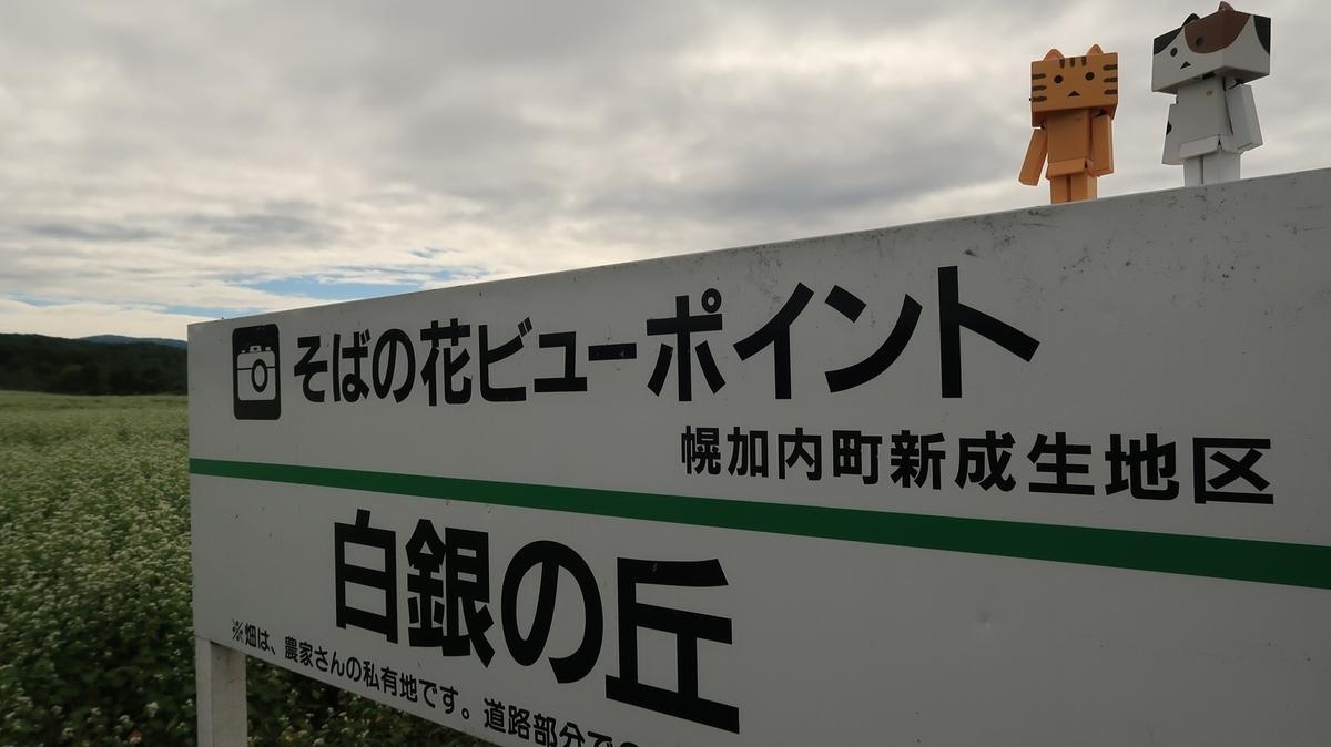 f:id:shirokumapanda:20210802233826j:plain