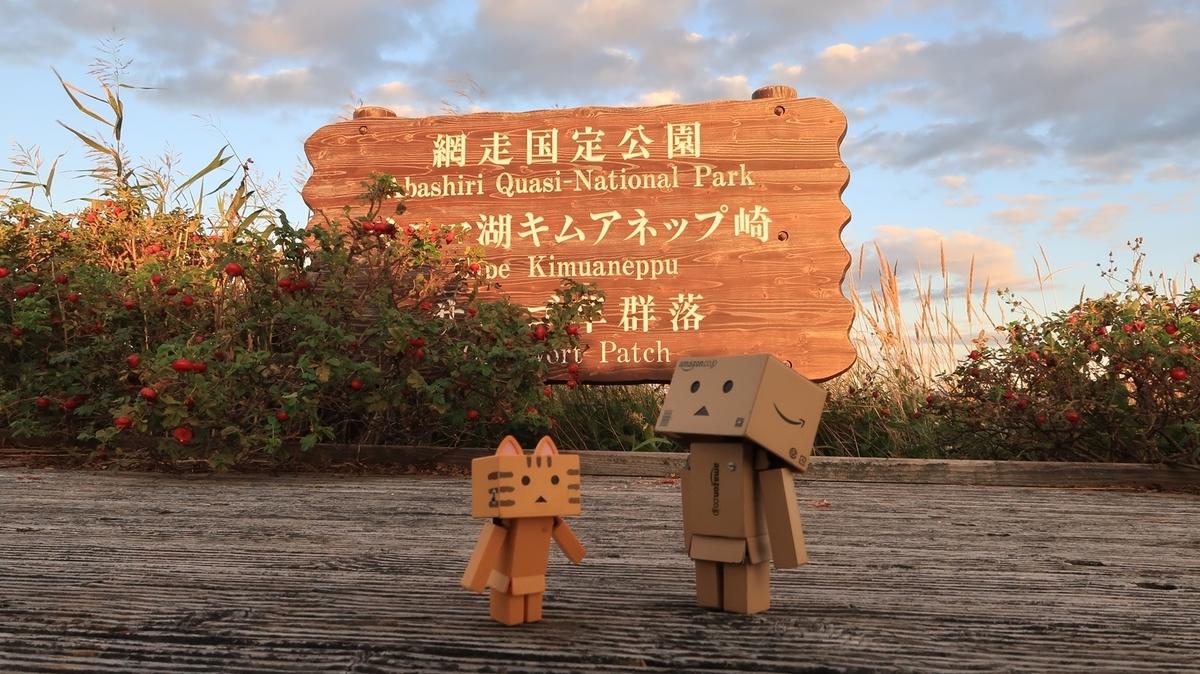 f:id:shirokumapanda:20210912130501j:plain