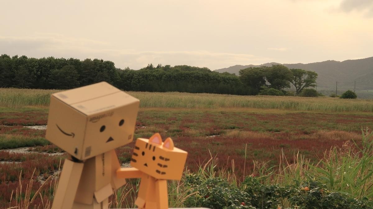 f:id:shirokumapanda:20210912222207j:plain