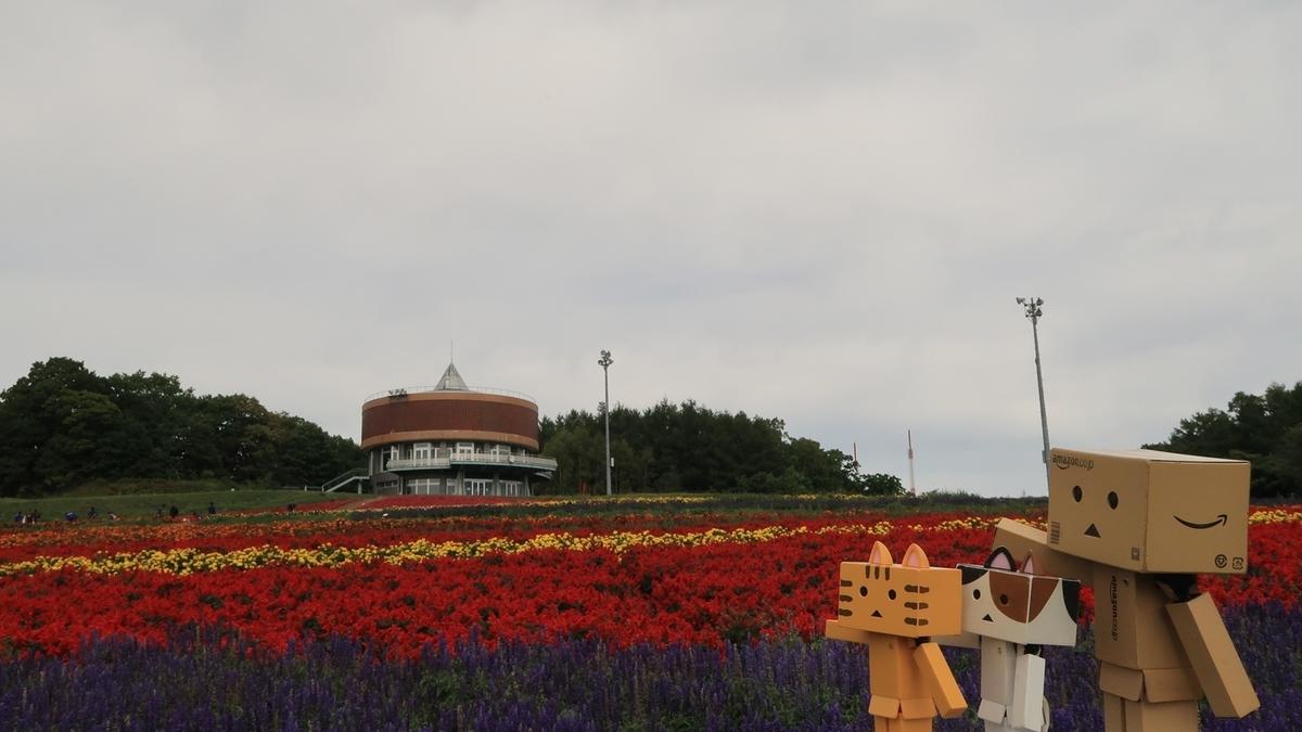 f:id:shirokumapanda:20210916232615j:plain