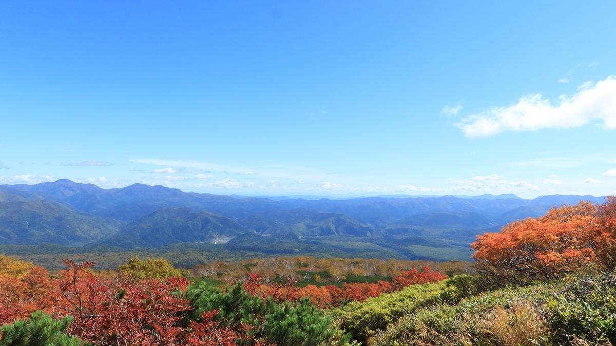 f:id:shirokumapanda:20210921232940j:plain