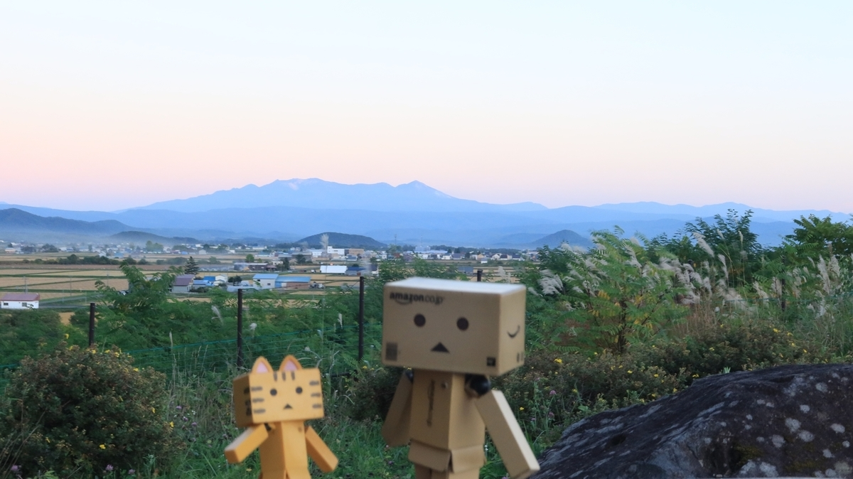f:id:shirokumapanda:20210921233203j:plain