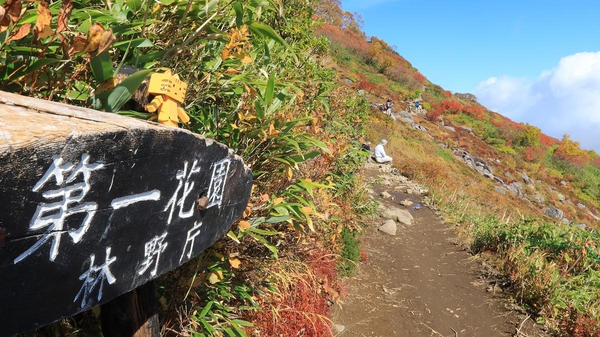 f:id:shirokumapanda:20210921233331j:plain