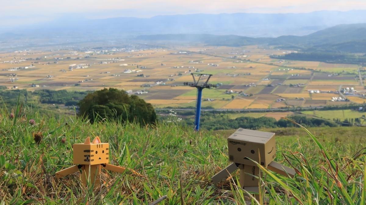 f:id:shirokumapanda:20210923005702j:plain