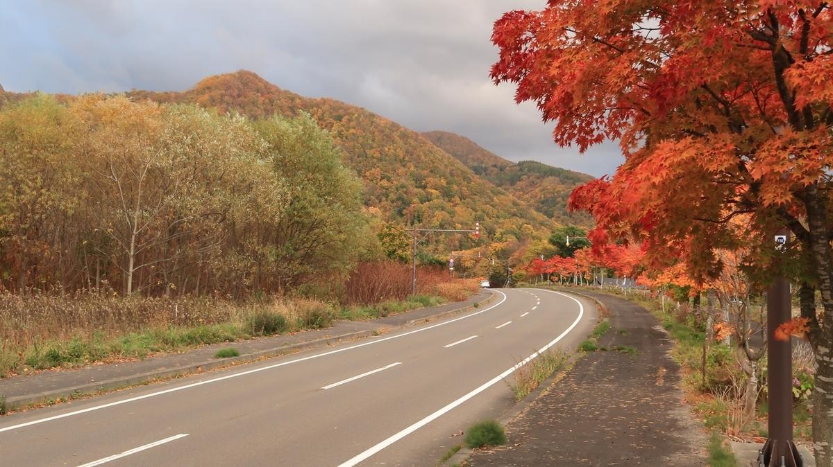 f:id:shirokumapanda:20210924213943j:plain