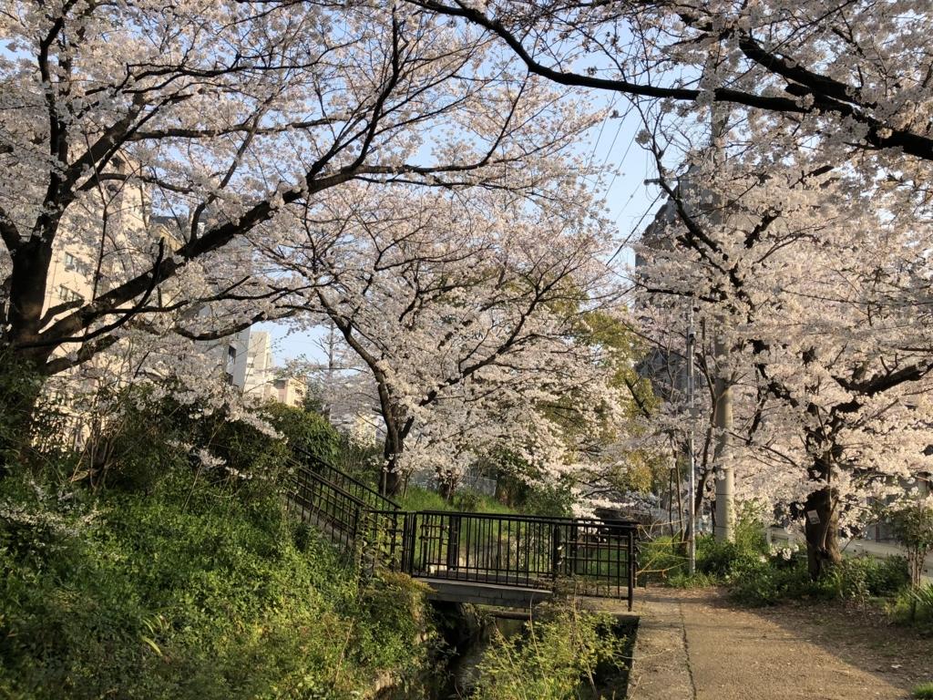 f:id:shirokumapunch:20180330145943j:plain