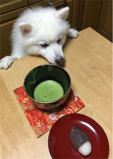 f:id:shirokun0806:20160916145511j:image