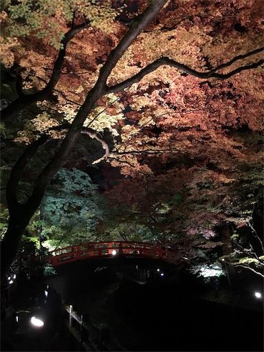 f:id:shirokun0806:20161119205830j:image