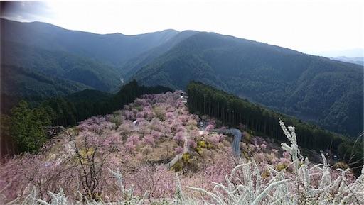 f:id:shirokun0806:20170423085918j:image