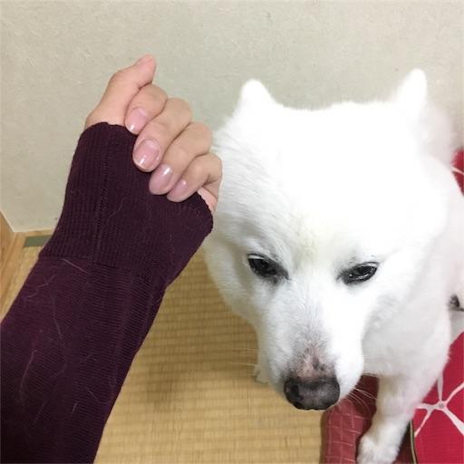 f:id:shirokun0806:20170430091344j:image