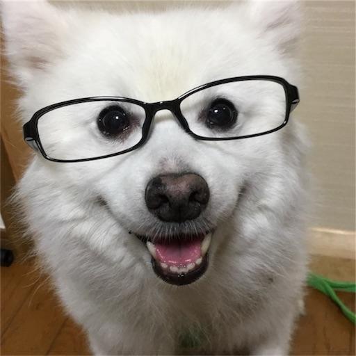 f:id:shirokun0806:20170702082524j:image