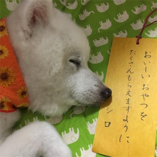 f:id:shirokun0806:20170707090354j:image