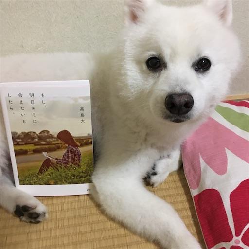 f:id:shirokun0806:20170730221510j:image