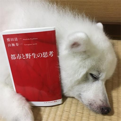 f:id:shirokun0806:20170909220831j:image