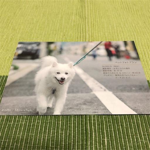 f:id:shirokun0806:20180203064032j:image