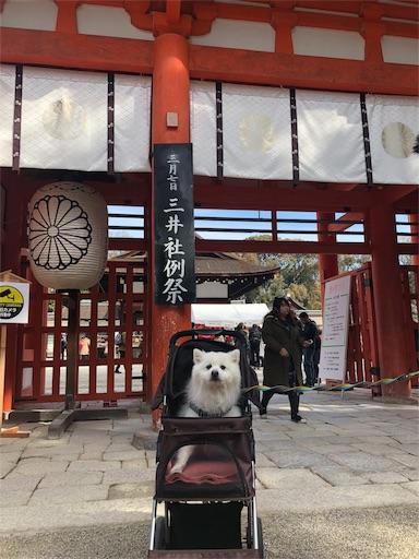 f:id:shirokun0806:20180307100543j:image