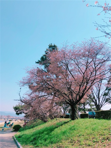 f:id:shirokun0806:20180330201726j:image