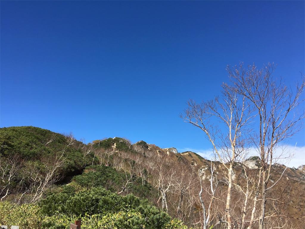 f:id:shiromuzu:20161013231552j:image