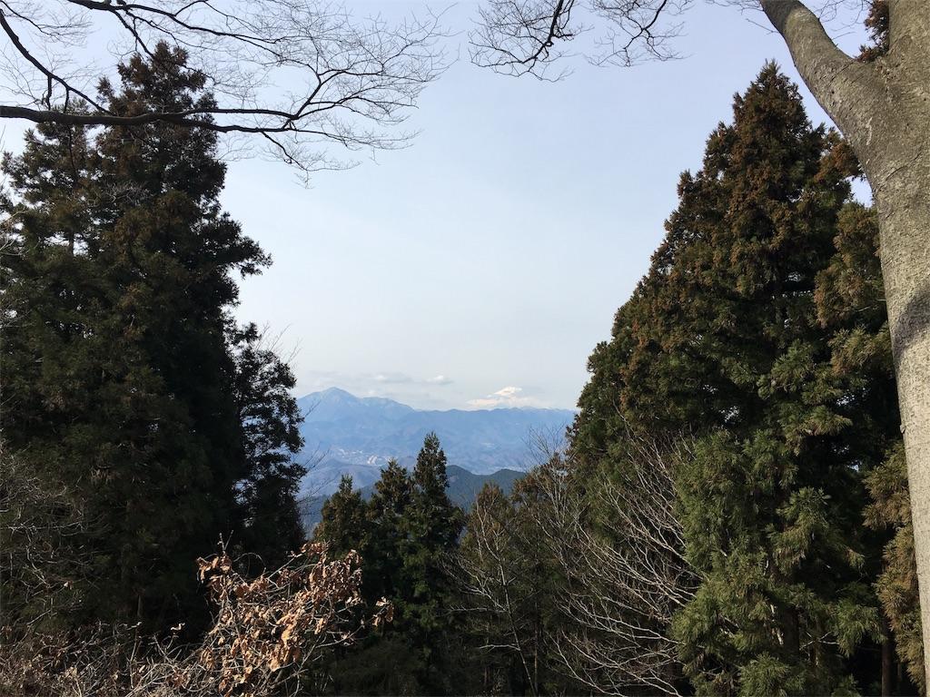 f:id:shiromuzu:20170330081046j:image