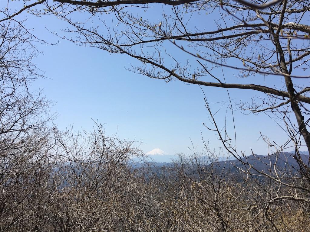 f:id:shiromuzu:20170502211703j:image