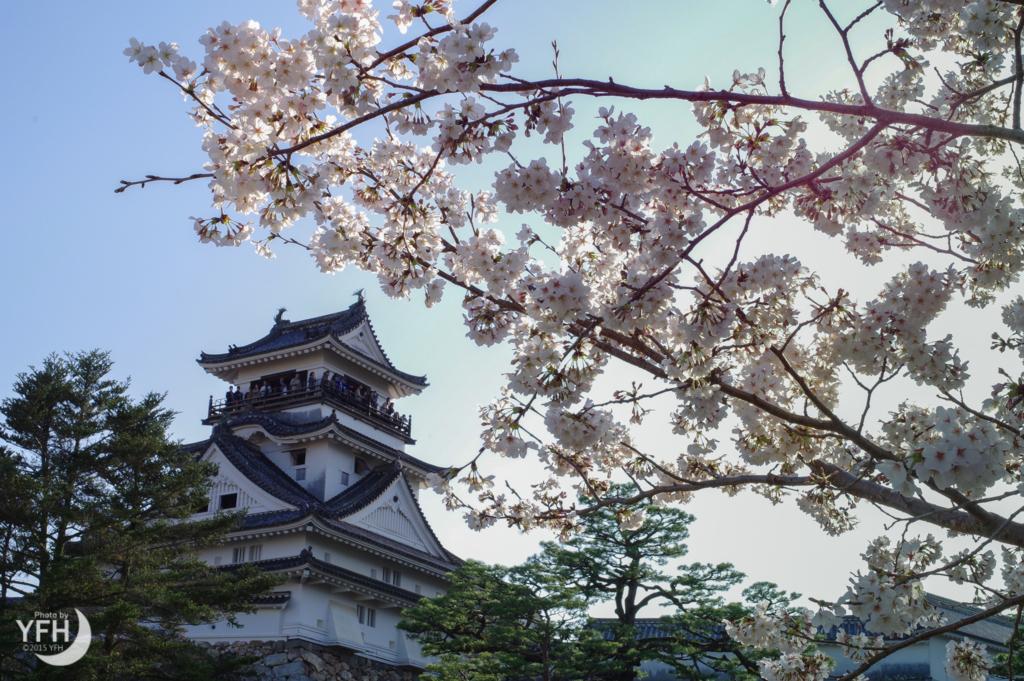 f:id:shironagassu:20180324200017j:plain